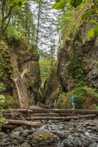 Oneonta Gorge logjam travel