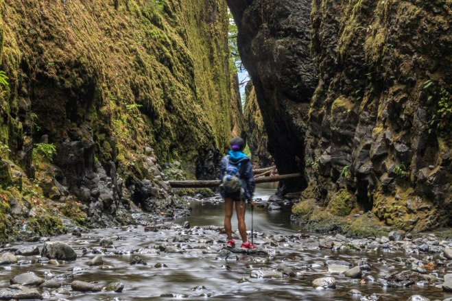 Oneonta Gorge in August