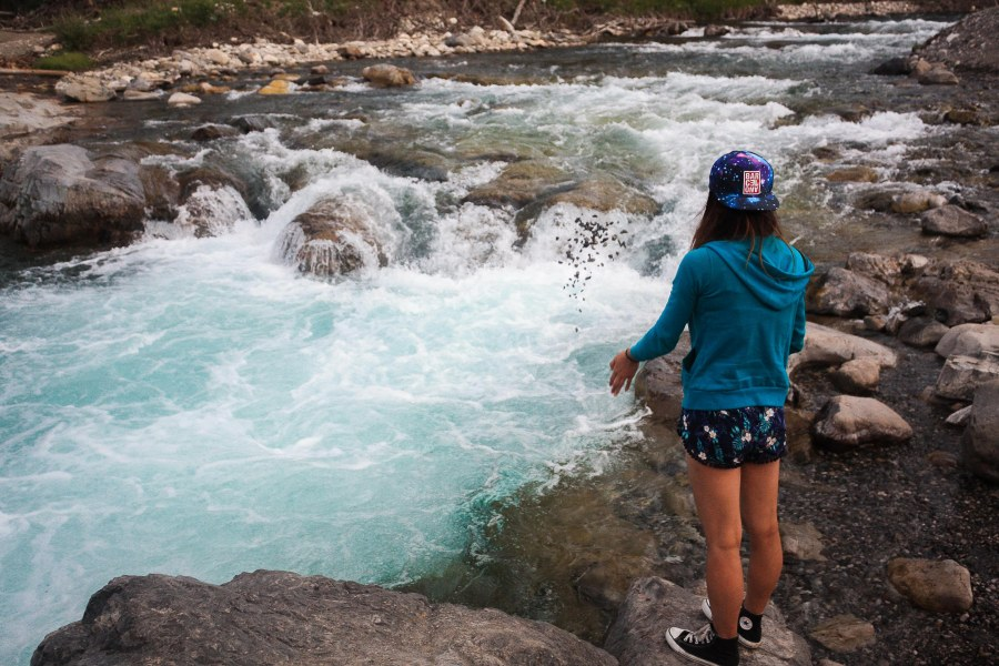 Elbow Falls Summer