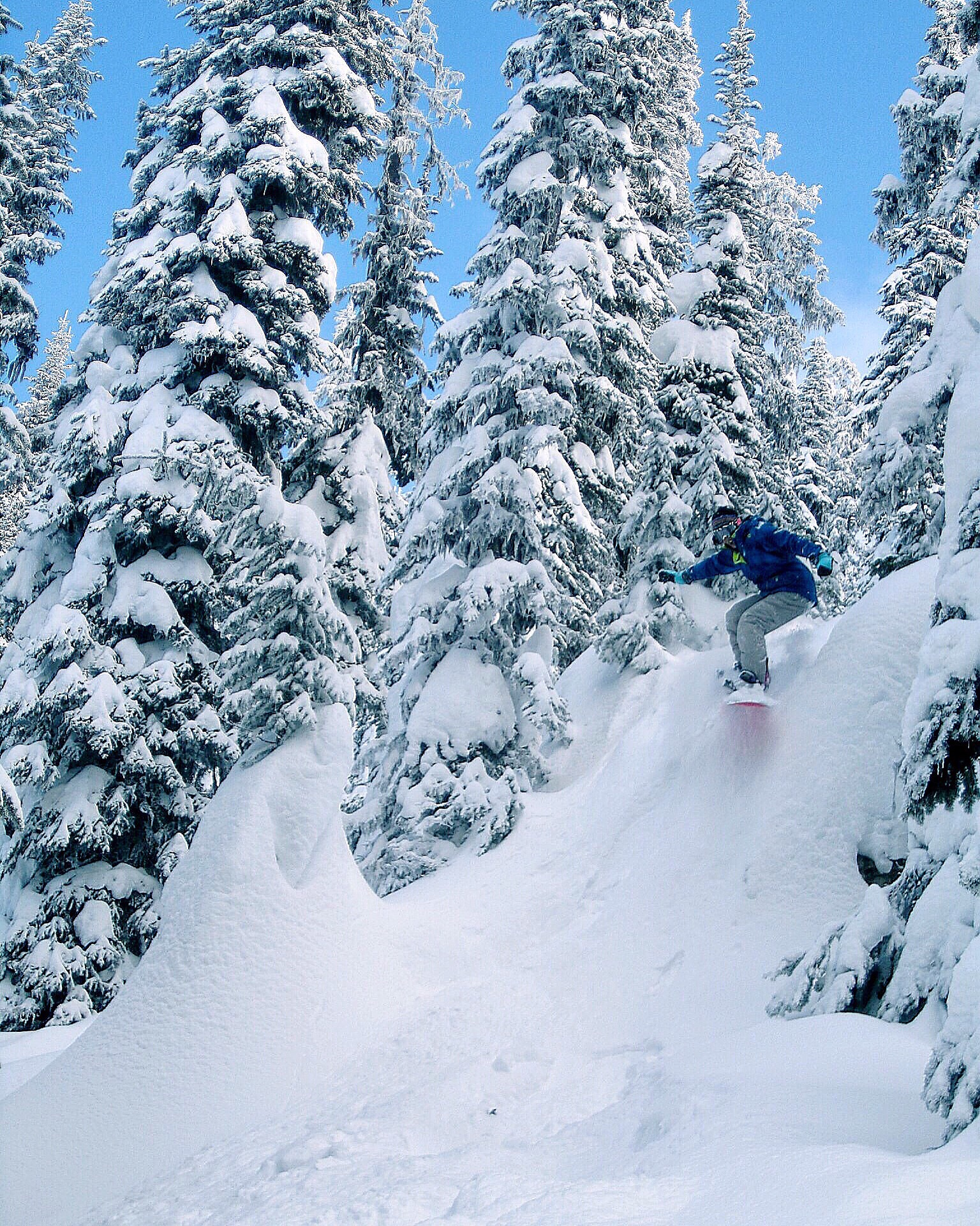 Banff winter snowboarding